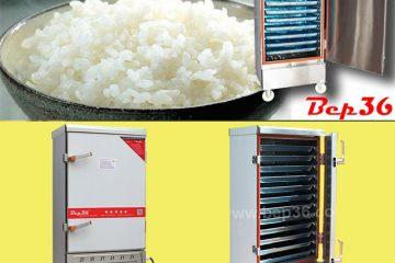 Tủ nấu cơm công nghiệp 12 khay dùng gas và điện vô cùng tiện lợi
